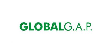 cert-global (1)